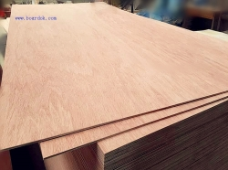 Bingtangor Plywood