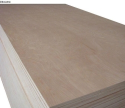 Top Grade Furniture Plywood